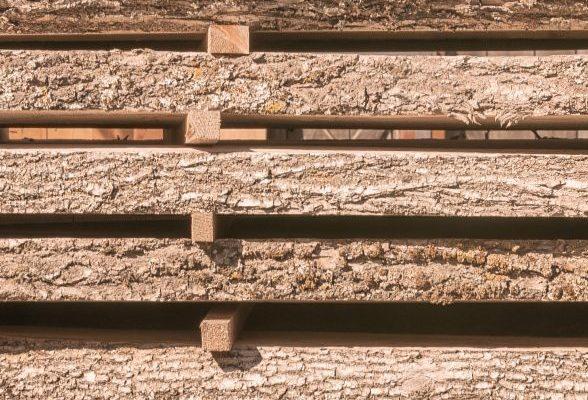 Rohstoff Holz, Verarbeitung, holzverarbeitende Industrie, Holzhandel